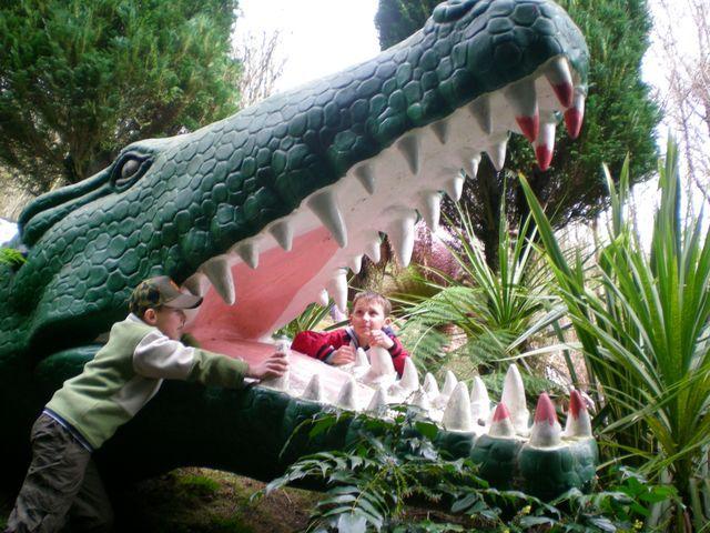 Zdjęcia: Walia, Krokodyl, WALIA