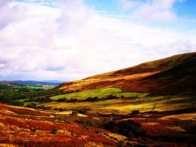 Zdjęcia: Okolice Brecon, Jesień w górach 3, WALIA