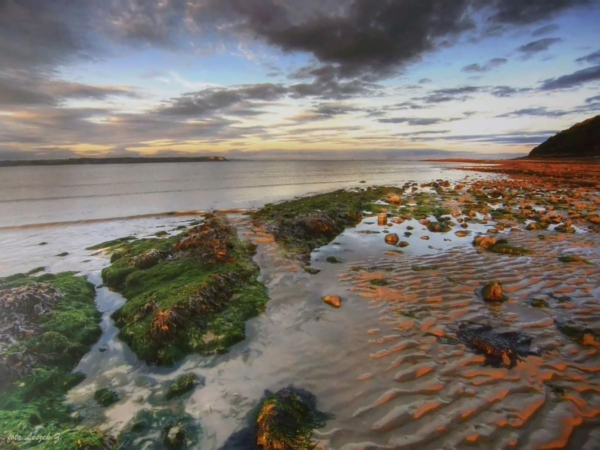 Zdjęcia: Swansea., Półwysep Gower., Oxwich Point ., WALIA