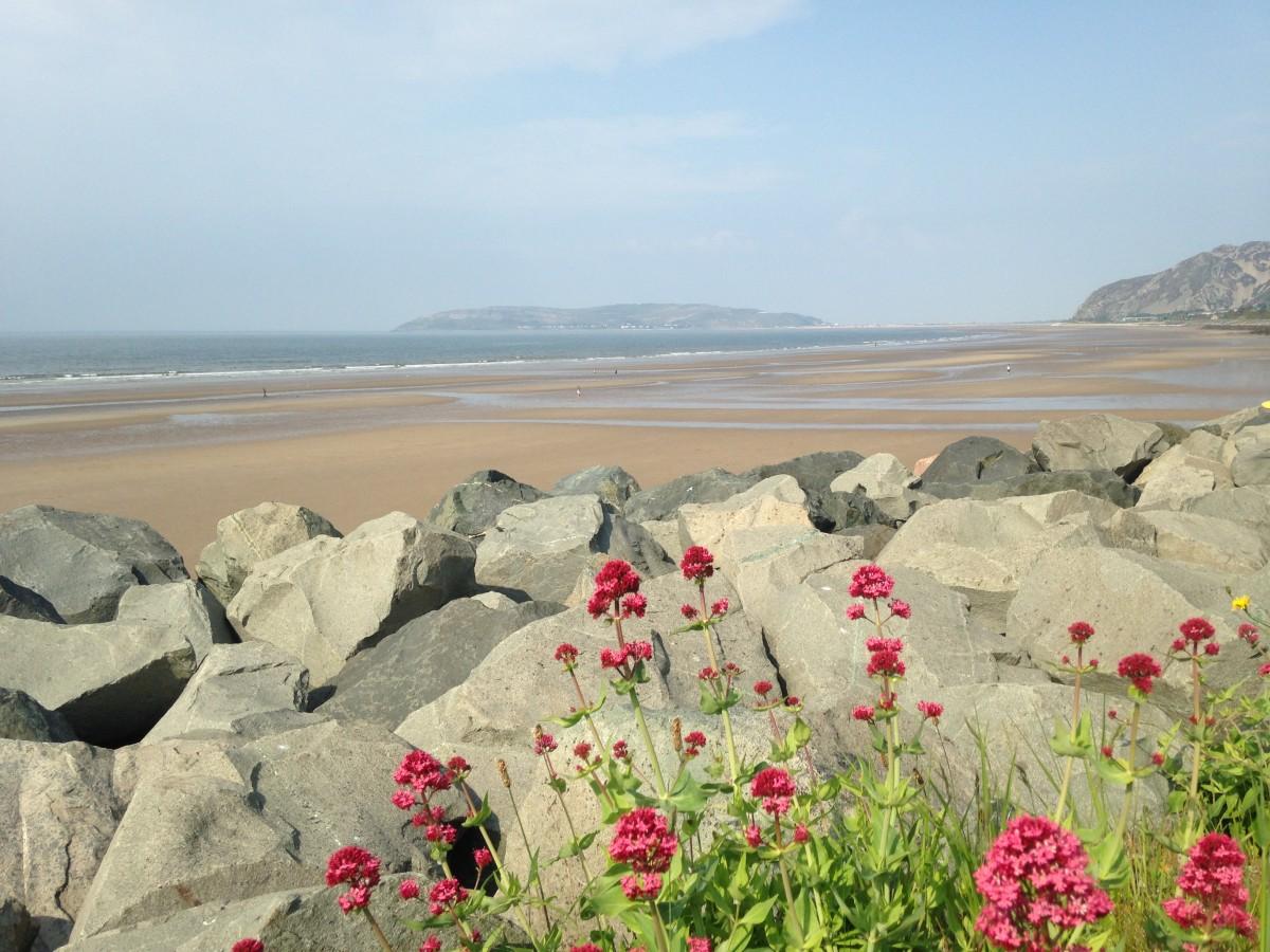 Zdjęcia: Północna Walia, hrabstwo Conwy, Walijski poranek na plaży, WALIA