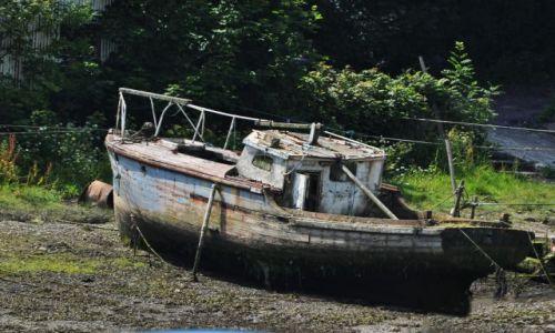 Zdjecie WALIA / - / Walia / Nad rzeką Seiont