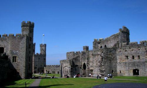 WALIA / - / Caernarfon / Caernarfon