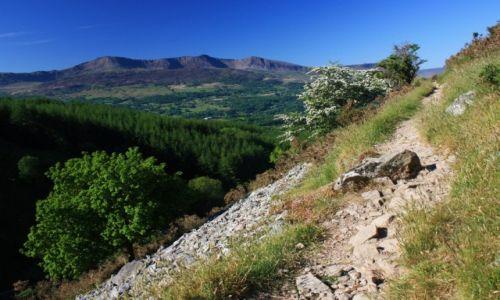 Zdjecie WALIA / Snowdonia N.P. / okolice Dolgellau / Ścieżka z widokiem na Cadair Idris