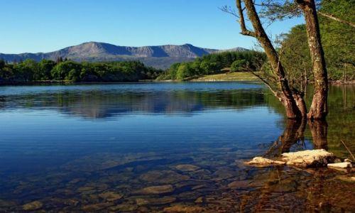 Zdjecie WALIA / Snowdonia N.P. /  Jezioro Llyn Cynwch / Tu znajdziesz s