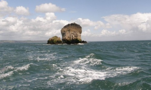 Zdjecie WALIA /  hrabstwie Pembrokeshire / zatoka Carmarthen. / Samotna Skała.