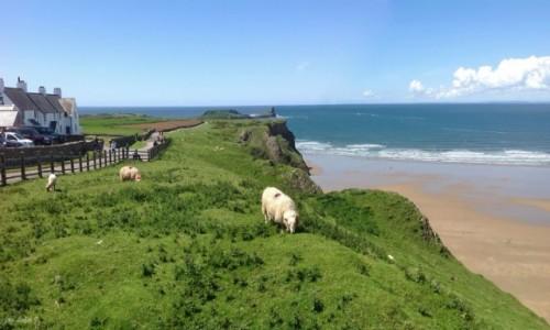 Zdjecie WALIA / Półwysep Gower. / Swansea. / Królowa brytyjskich plaż - Rhossili.
