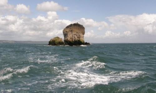 Zdjecie WALIA / Wyspa Caldey. / Tenby. / Samotna Skała.