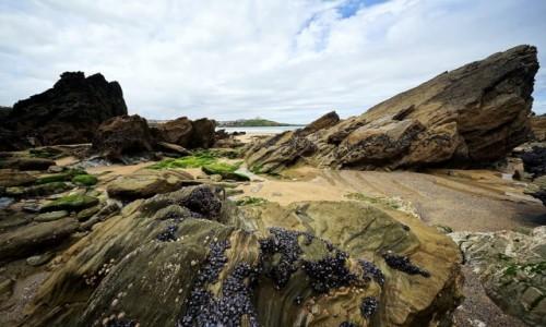 WALIA / Kornwalia / Newguay / Na dnie oceanu
