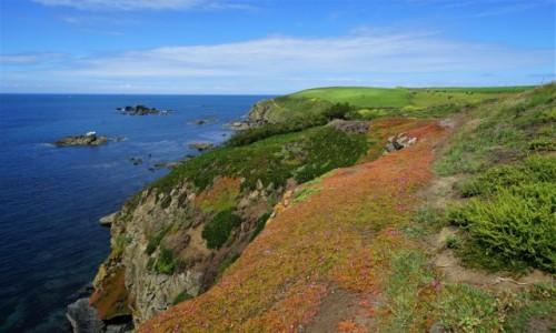 Zdjecie ANGLIA / Kornwalia / Lizard Point / Kolorowy klif