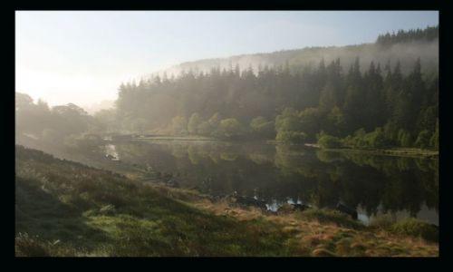 Zdjecie WALIA / Walia Pln / Snowdonia / Poranne mgly