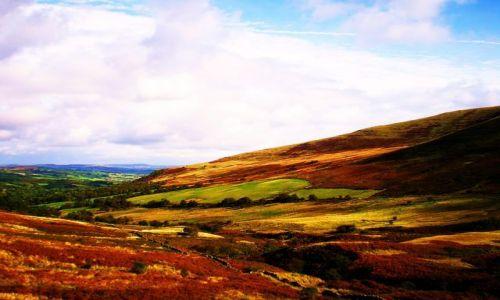 Zdjecie WALIA / - / Okolice Brecon / Jesień w górach 3