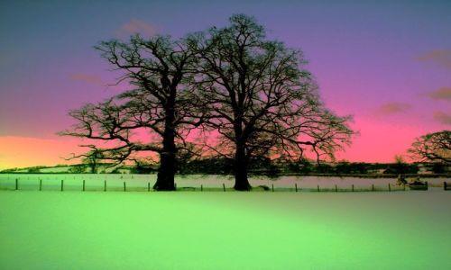 Zdjecie WALIA / - / Okolice Brecon / Zima w Walia