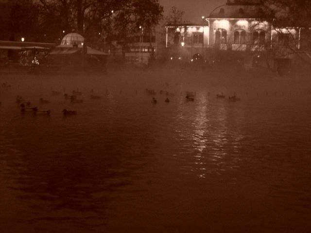 Zdjęcia: Węgry, Budapeszt, Plac Bohaterów- Kaczuchy na kąpielisku termalnym, WĘGRY