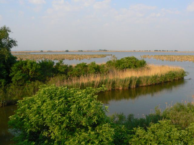 Zdjęcia: PN Hortobagy, Północne Węgry, Park Narodowy Hortobagy- stawy rybne Hortobagy Halasto, WĘGRY