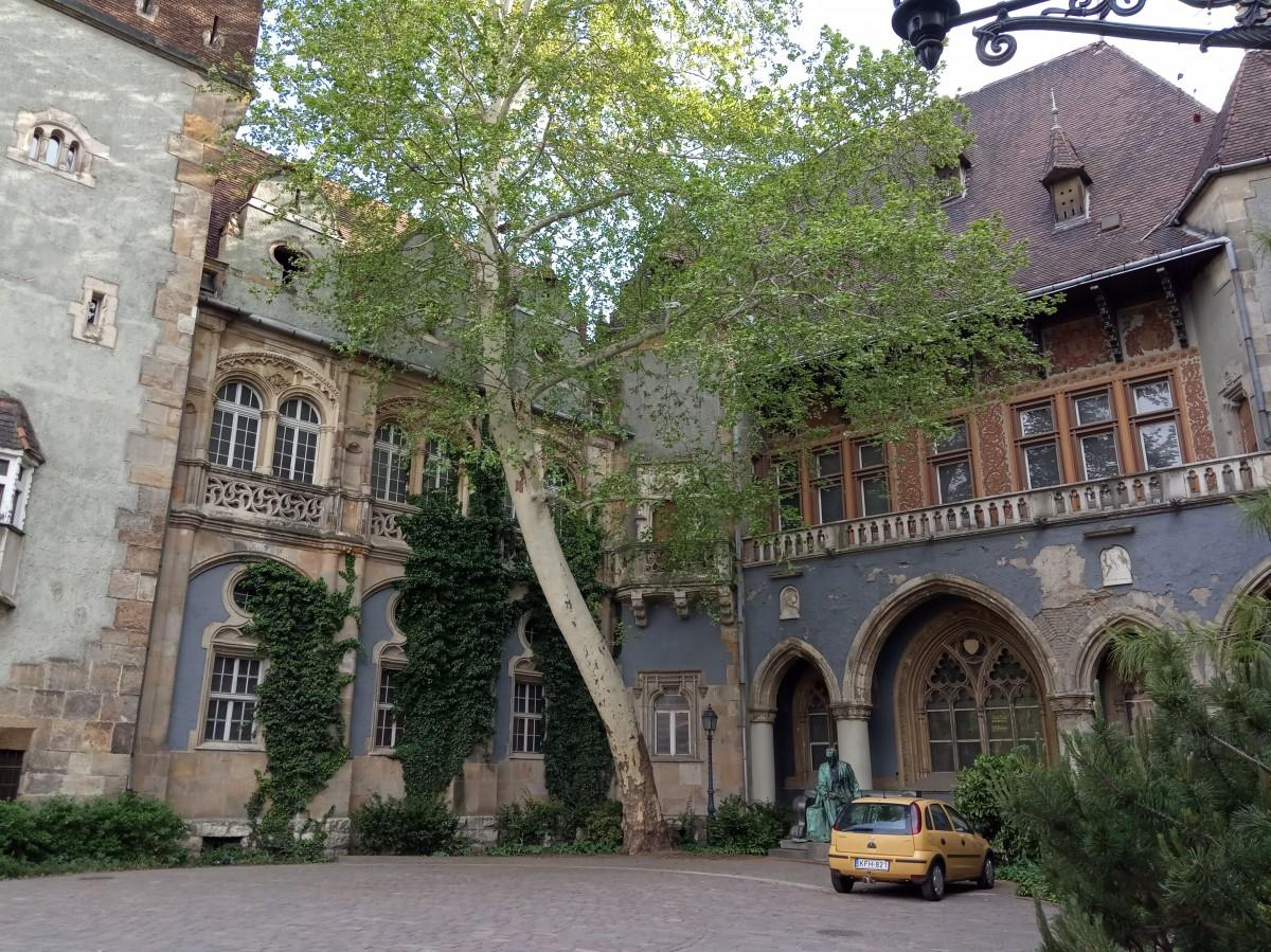 Zdjęcia: Zamek Vajdahunyad, Budapeszt, Zamek Vajdahunyad, WĘGRY