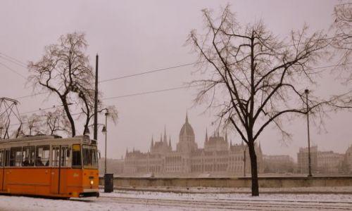 W�GRY / - / Budapeszt / Wzd�u� rzeki ...