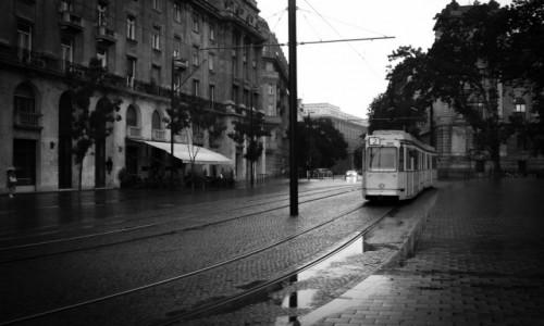 Zdjecie WĘGRY / Budapeszt / Budapeszt / Budapeszt