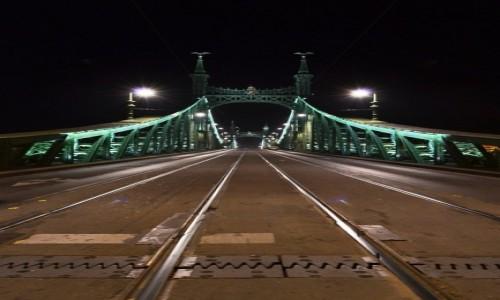 Zdjecie WĘGRY / Budapeszt / most Wolności / Most Wolności