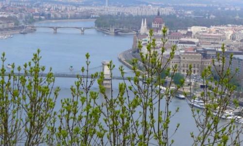 Zdjecie WĘGRY / Budapeszt / Budapeszt / ...aby do wiosny