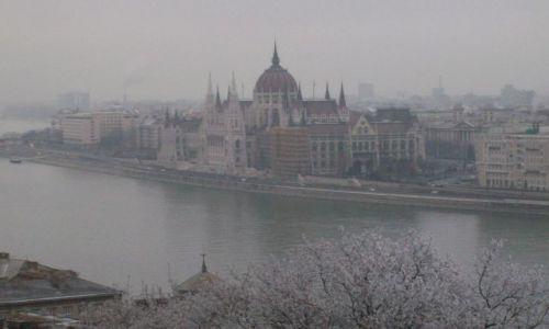 Zdjecie WĘGRY / Budapeszt / Węgry / Parlament