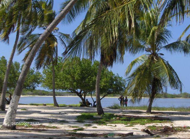 Zdjęcia: chichiriviche - cayo sombrero, parque nacional morocoy, wyspa SOMBRERO, WENEZUELA