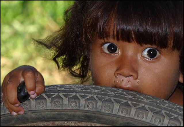 Zdjęcia: gdzies nad rzeka, Orinoko, Przestraszona slicznooka, WENEZUELA