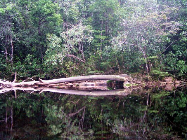 Zdj�cia: okolice Canaimy, dzika rzeka...., WENEZUELA