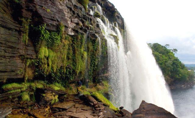 Zdjęcia: Wodospad WILKA TEPUI, FOTO #, WENEZUELA