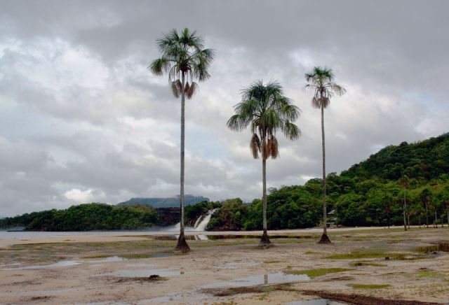 Zdjęcia: Nad rzeką RIO CARRO, CANAIMA, * * *, WENEZUELA