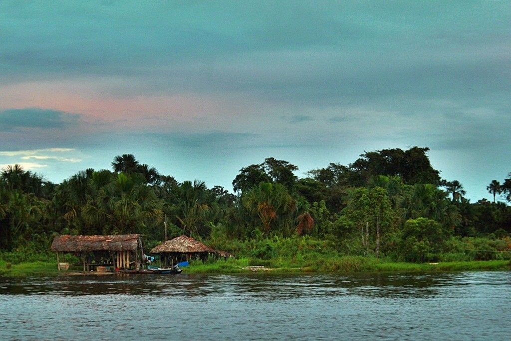 Zdjęcia: jw, Delta Orinoko, Wioska Indian Warao, WENEZUELA