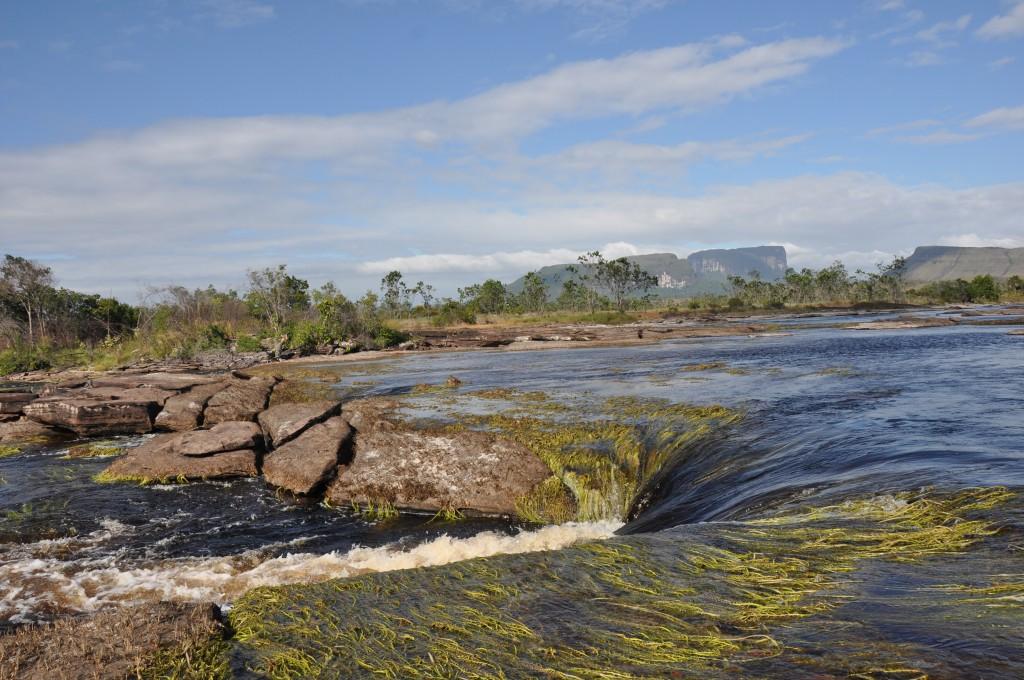 Zdjęcia: Park Narodowy Canaima, Nurt, WENEZUELA