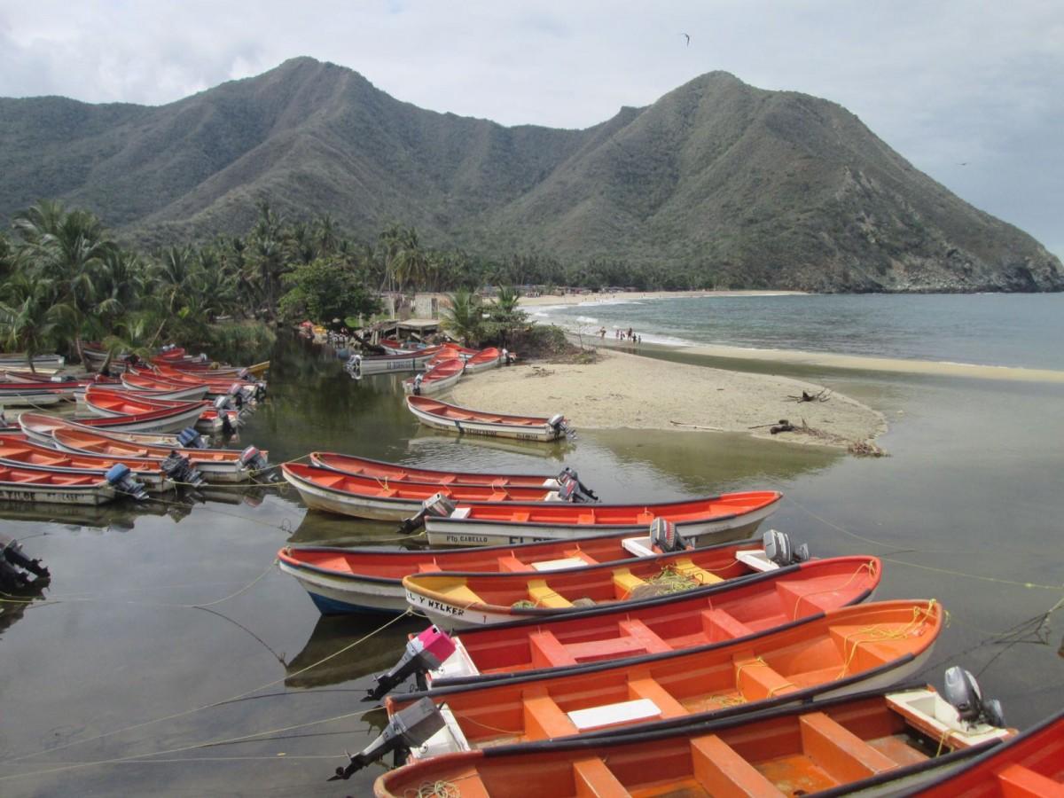 Zdjęcia: Playa, Henri pittier, Venezuela , WENEZUELA