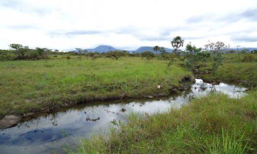 Zdjęcie WENEZUELA / Bolivar / Park Narodowy Canaima / Gran Sabana (1)
