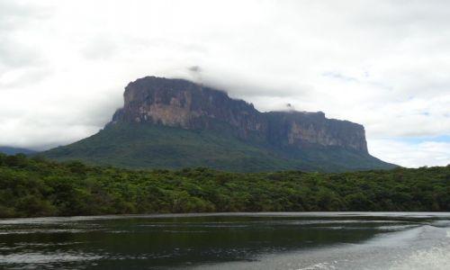 Zdjęcie WENEZUELA / Bolivar / Park Narodowy Canaima / Auyan Tepui