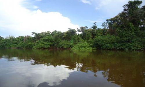 WENEZUELA / Bolivar / Rio Caura / Krajobraz z rzeką