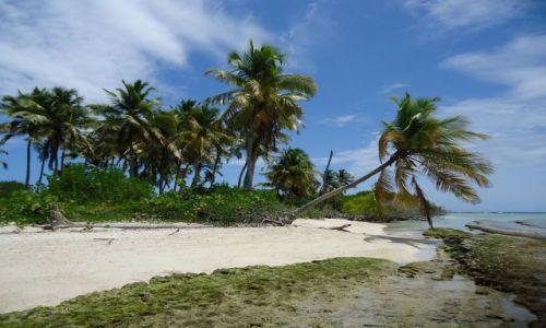 Zdjecie WENEZUELA / Falcon / Park Narodowy Morrocoy / A już na wyspach jest tak ...