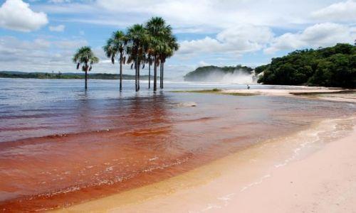Zdjecie WENEZUELA / - / Canaima / Plaża w Canaimie