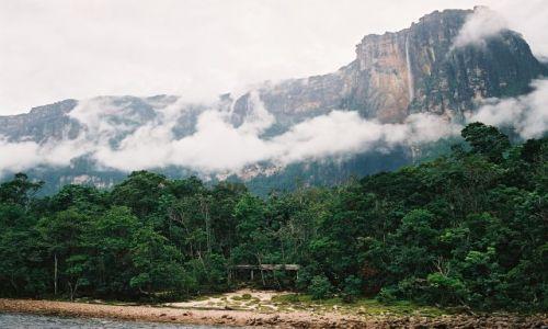 Zdjęcie WENEZUELA / - / Gran Sabana / Wodospad Salto Angel (979m)