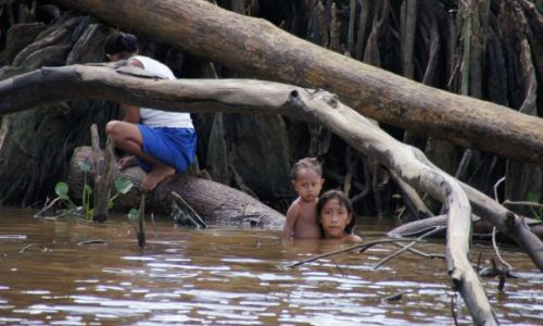 Zdjecie WENEZUELA / Delta / Orinoco / Znowu gapie nas oglądają