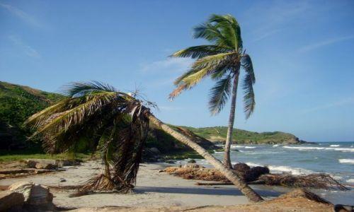 Zdjecie WENEZUELA / Margarita / Playa El Aqua / pazerne morze