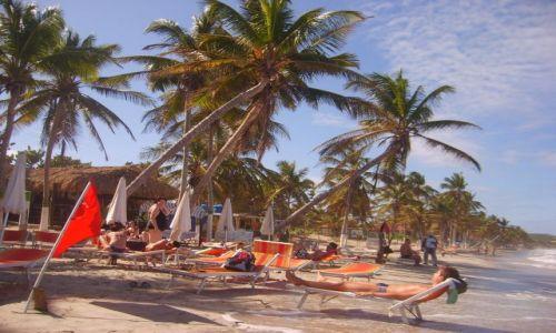 Zdjecie WENEZUELA / Playa El Aqua/Margarita / plaża /