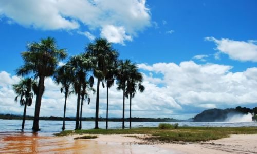 Zdjecie WENEZUELA / Canaima National Park / Canaima / Canaima