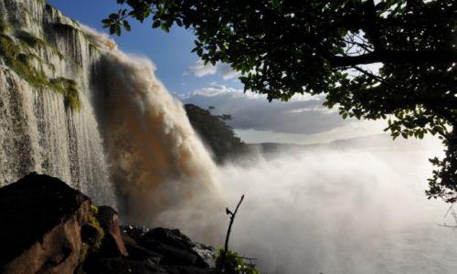 Zdjecie WENEZUELA / Pln-wsch Wenezueli / Canaima National Park / Z sila Wodospadu