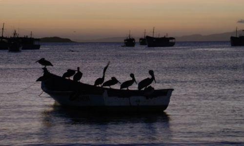 WENEZUELA / Wyspa Margarita / Juan Griego / W porcie
