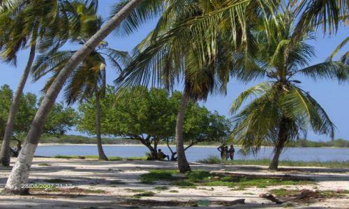 Zdjecie WENEZUELA / parque nacional morocoy / chichiriviche - cayo sombrero / wyspa SOMBRERO