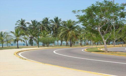 Zdjecie WENEZUELA / Venezuela / Maracaibo / Venezuela Palm Park