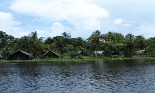 Zdjecie WENEZUELA / Canaima / Canaima / Delta Orinoko