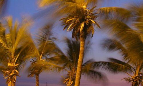 Zdjecie WENEZUELA / brak / karaiby / Puerto La Cruz