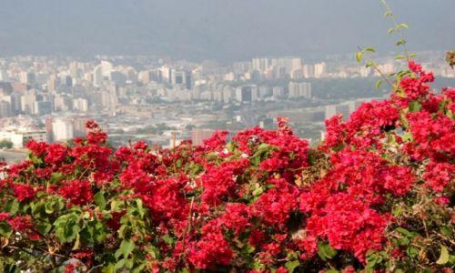 Zdjęcie WENEZUELA / brak / CARACAS / FOTO 1
