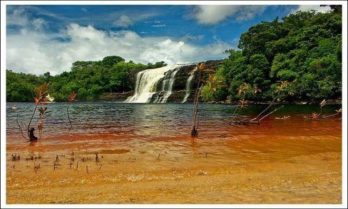 Zdjecie WENEZUELA / Canaima / Laguna w Canaimie / Brandy
